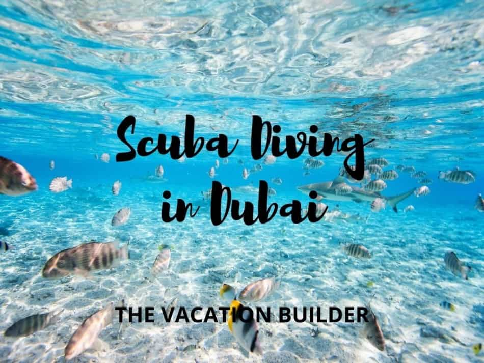 Best Places to Scuba Dive in Dubai | The Vacation Builder