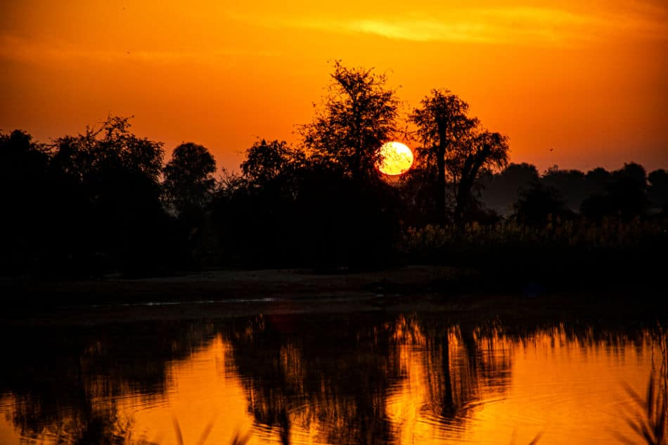 Best Places to Watch Sunrise in Dubai - Al Qudra Lakes | The Vacation Builder