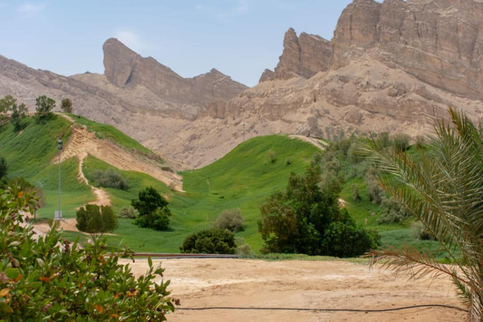 Things to do at Jebel Hafeet - Visit The Desert Park   The Vacation Builder